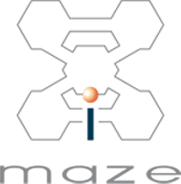 Maze Training Coaching Consulting – Experience Amazing Results